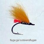flugagulsolskensflugan