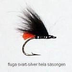 flugasvart-silverhela sasongen